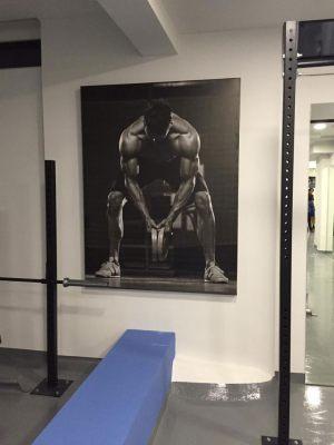 autokolliti_vinilio_fitness_hall